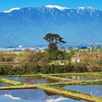 南箕輪村の風景の写真